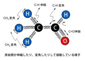 分子の振動図