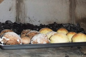 Casa70 M006  焦がしたパン(お試し)